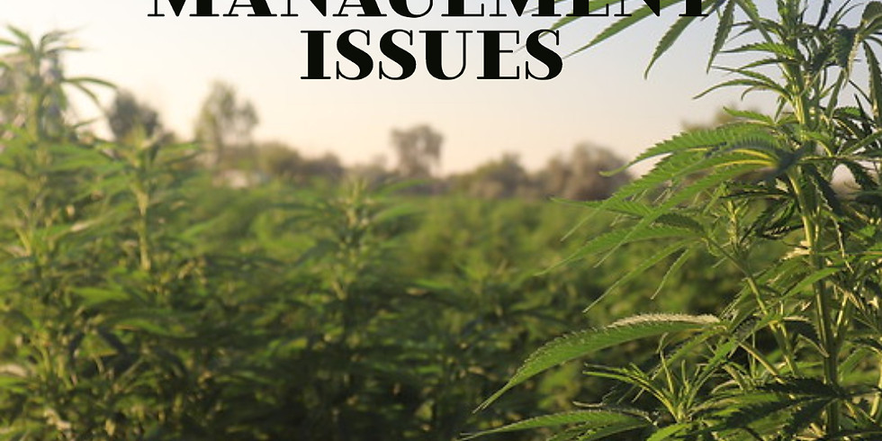 Risk Management Considerations for Hemp Producers - Del Ag Week