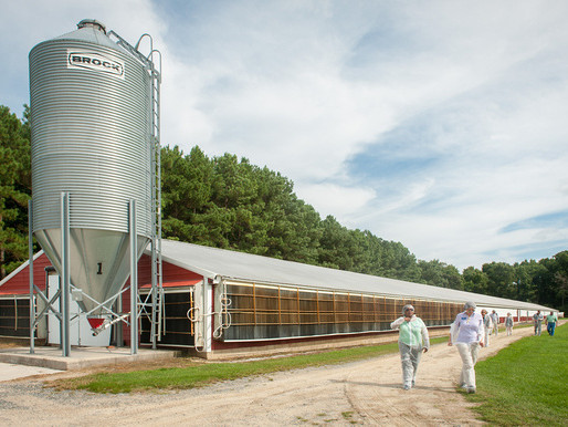 State Court Decision Highlights When Right-to-Farm Laws Might Not Apply
