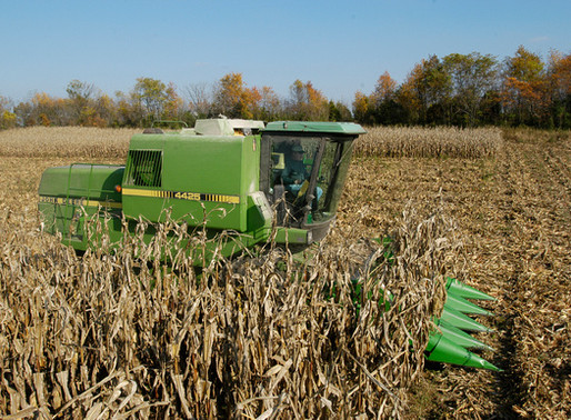 It is Time to Sign Up for the 2020-2021 MDA Cover Crop Program