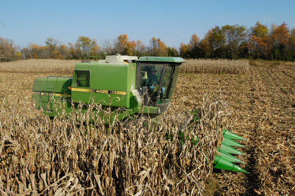 Image of Corn Harvest at the Western Maryland Research and Education Center