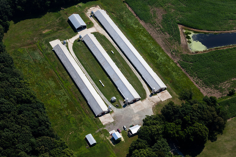 Aerial view of Queen Anne's County poultry farm by Will Parson/Chesapeake Bay Program