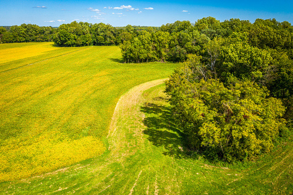 Image of field in Maryland by Edwin Remsberg