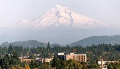 Gresham Oregon Blinds Shades.jpg