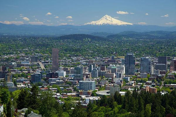 Portland Oregon Shades Blinds.jpg