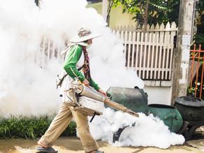 ¿Cómo logró China obtener un certificado libre de malaria por la OMS?
