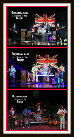 beatles tribute band.jpg