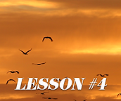#4Lesson layout.png
