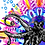 Thumbnail: Octopus