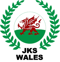 Karate Wales South Wales North Wales JKS Martial Arts classes