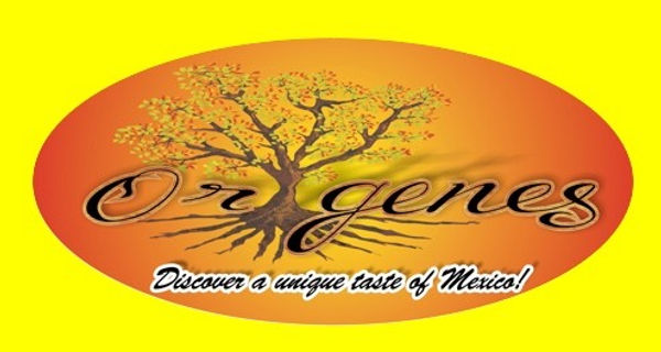 Origenes Logo with Yellow_edited.jpg