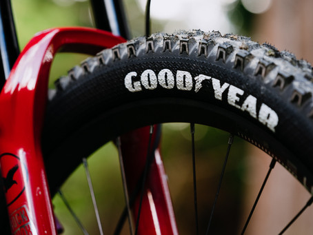 Goodyear Newton DH Ultimate Tyres Review - would recommend to a friend