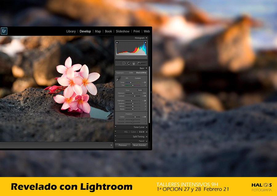 REVELADO-CON-LIGHTROOM-FEB21.jpg
