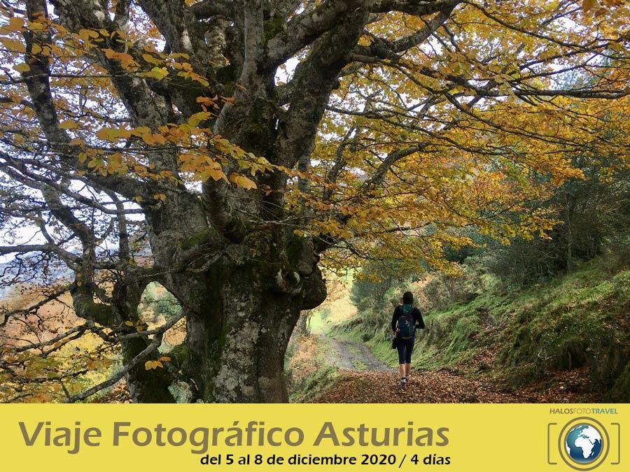 Cartel-Viaje-fotografico-asturias.jpg