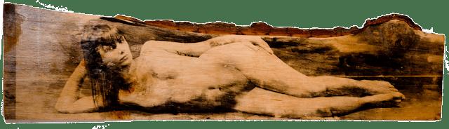 Camino-madera-panoramica