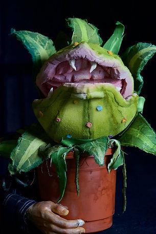 little shop audrey 2 puppet rental
