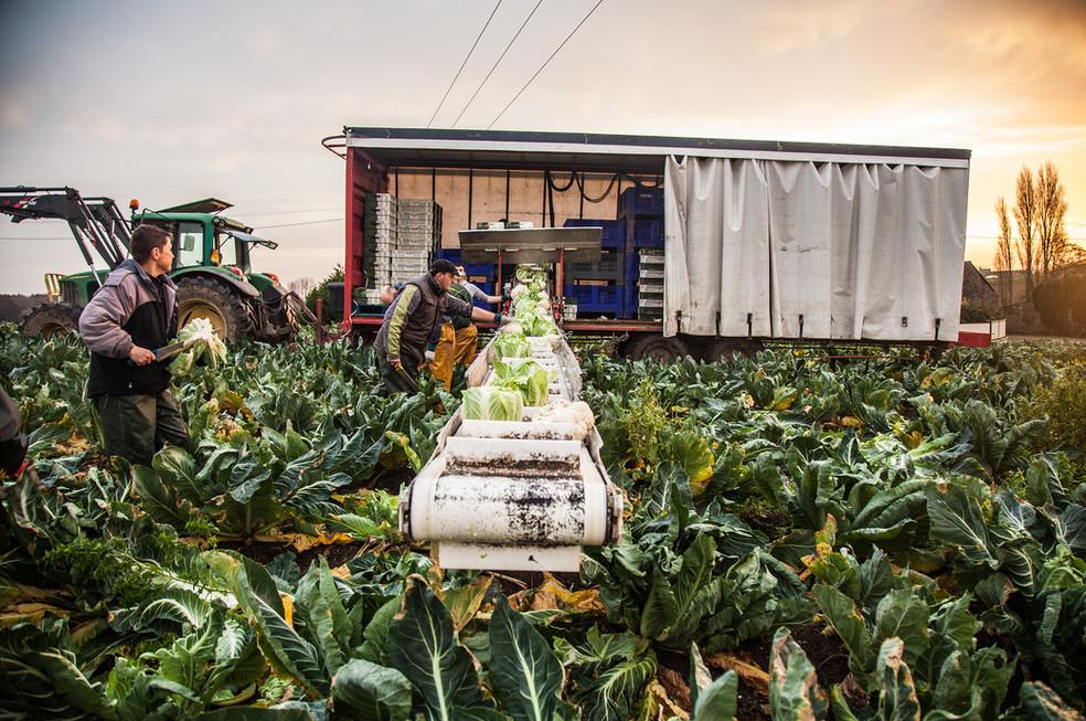Amenagement - production agricole -WEB.