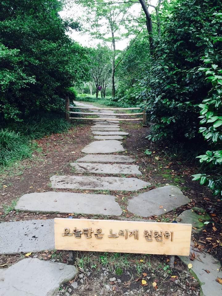 🇰🇷 Jeju Island, South Korea