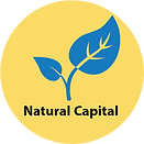 NaturalCapitalCircle.png