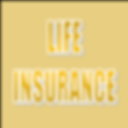 SOLID LIFE BROWN INSURANCE.png