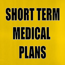 SHORT TERM MEDICAL PLANS The 401k Man.jp