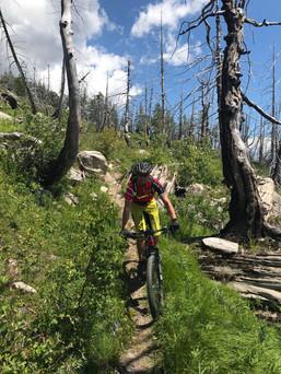 Albinen Trail