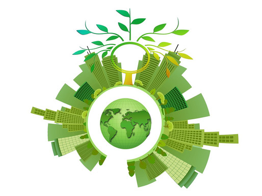 What's Your (Carbon) Budget? Our Roadmap for Going Carbon Neutral In 2020