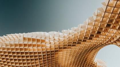 wooden roof.jpg