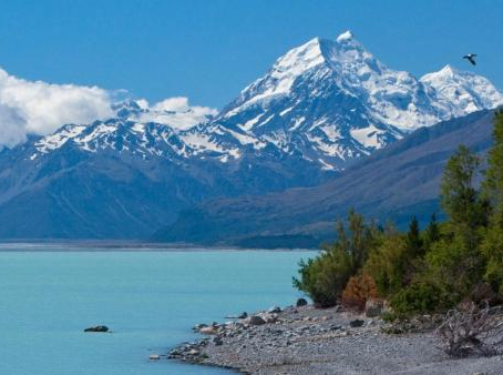 Switzerland and New Zealand - the Safest Jurisdictions for Storage