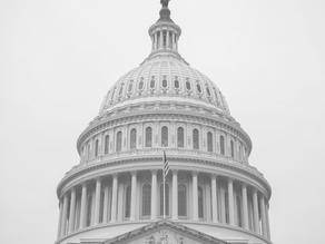 The Biden Era: Big Bets on Big Government