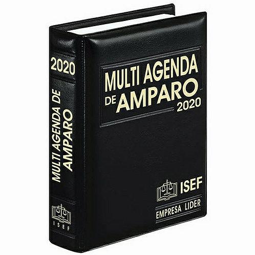 Multi Agenda De Amparo 2020  Versión Ejecutiva