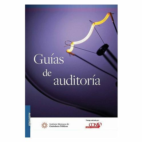 Guías de Auditoría 2020 Versión Profesional