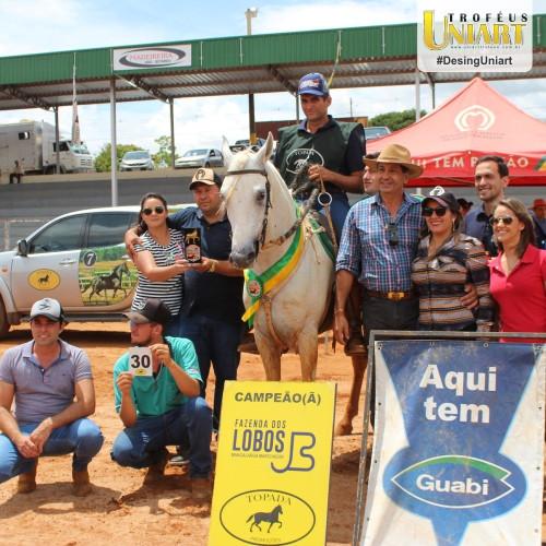 Premiação de Copa de Marcha, com adestradores montados nos cavalos que estão com escarapelas e pessoas ao lado segurando os troféus