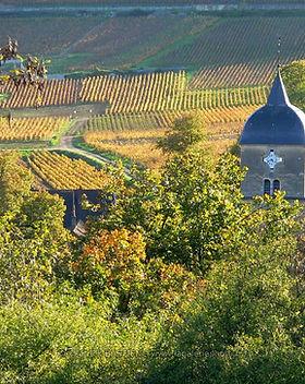 Chambolle-Musigny-vingård.jpg