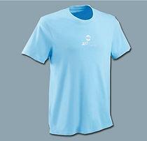 t-shirt bleu.jpg
