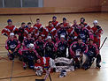 Section roller hockey
