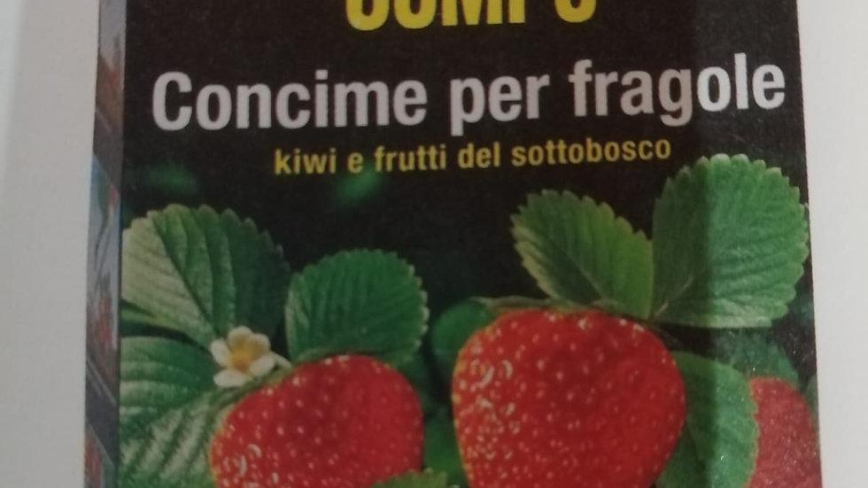 Compo Concime Per fragole con Guano 1 kg