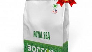 Bottos royal sea semi prato gramigna 10kg