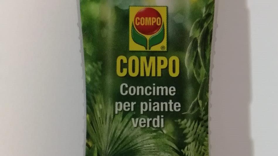 Compo Concime Per Piante Verdi 1 LT