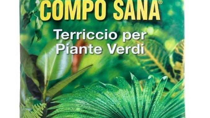 Compo Sana Terriccio per Piante Verdi LT 20