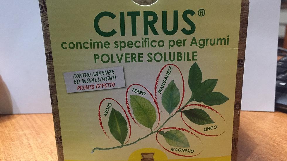 I consigli dell'esperto - Ctrus concime per agrumi solubile 900g