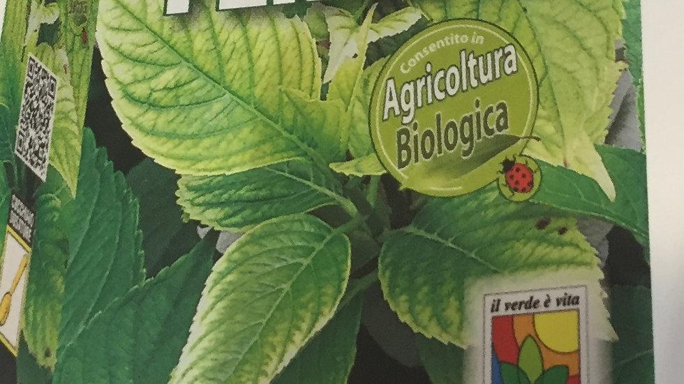 Flortis Solfato Ferroso 1 kg