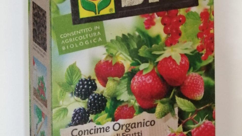 Compo Bio Lana diPecora per Piccoli Frutti 750g