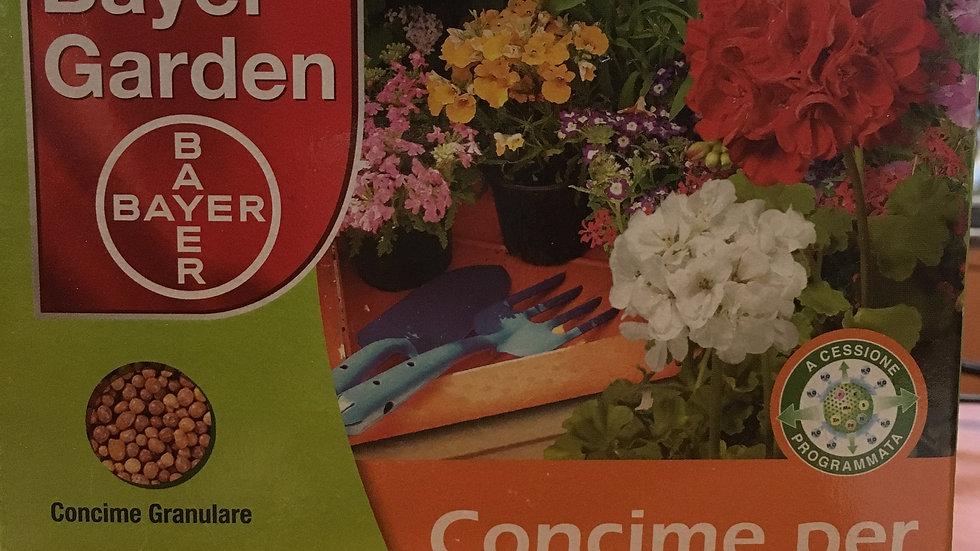 Bayer Garden Concime per Gerani e Piante Fiorite 700g