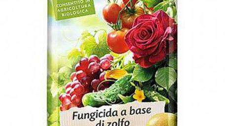 Compo bio Tiowetting fungicida a base di zolfo 500g