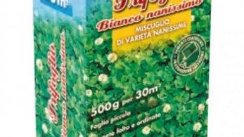 GranPrato Trifoglio bianco nanissimo  500 G semi prato