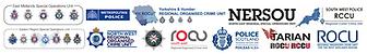 ROCU Logos v2.PNG