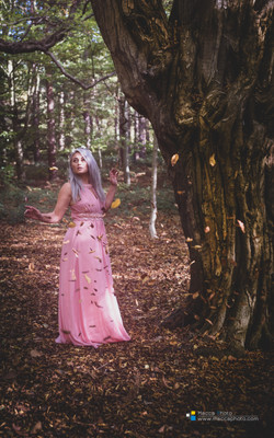 ENCHANTED-FOREST-05