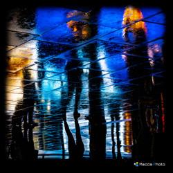 Rain Reflection 14