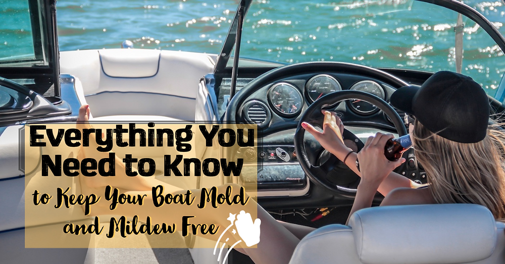 Everything You Need to Know to Keep Your Boat Mold and Mildew Free