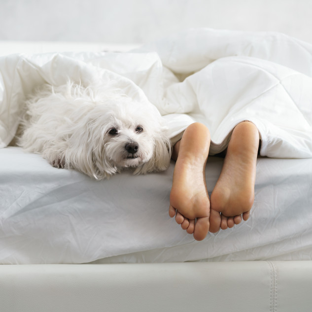 girl-sleeping-in-bed-with-dog-and-showin